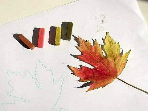 leaf with pastels