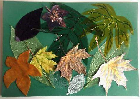 leaf collage with green background