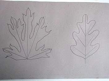 Leafproj2