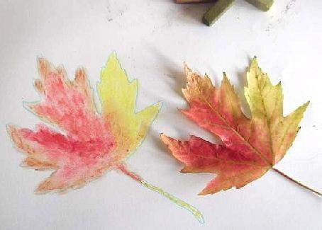 Autum leaf and drawing