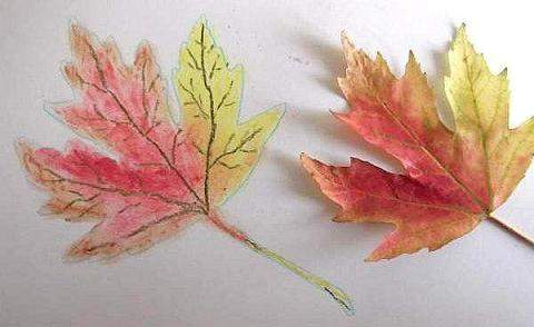 Autum leaf using pastels
