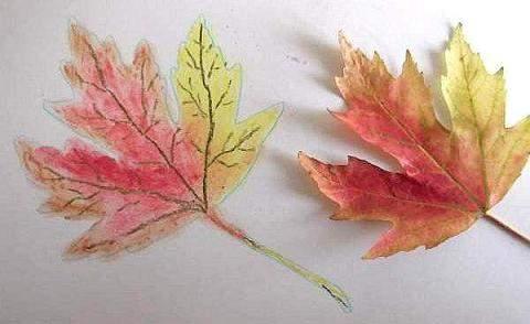 Autum leaf using pastels