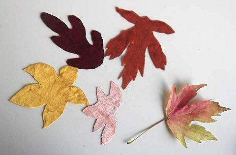 Leaves for collage