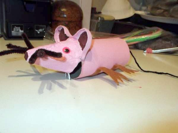 Pink egg box mouse